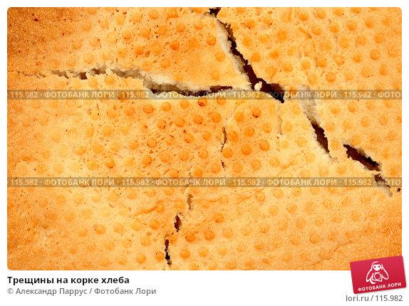 Трещины на корке хлеба, фото № 115982, снято 14 сентября 2007 г. (c) Александр Паррус / Фотобанк Лори