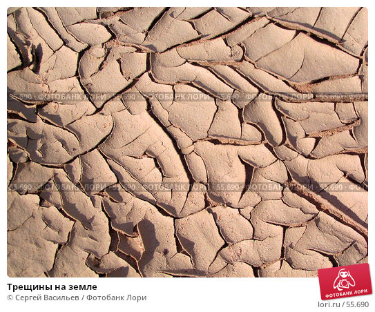 Трещины на земле, фото № 55690, снято 23 июня 2007 г. (c) Сергей Васильев / Фотобанк Лори