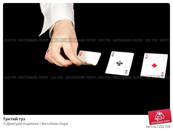 Третий туз, фото № 252770, снято 16 февраля 2007 г. (c) Дмитрий Ощепков / Фотобанк Лори