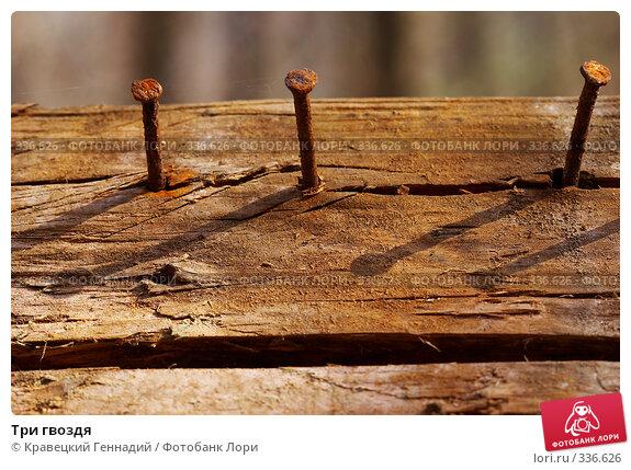 Три гвоздя, фото № 336626, снято 13 апреля 2005 г. (c) Кравецкий Геннадий / Фотобанк Лори