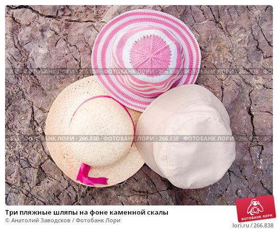 Три пляжные шляпы на фоне каменной скалы, фото № 266838, снято 14 сентября 2006 г. (c) Анатолий Заводсков / Фотобанк Лори