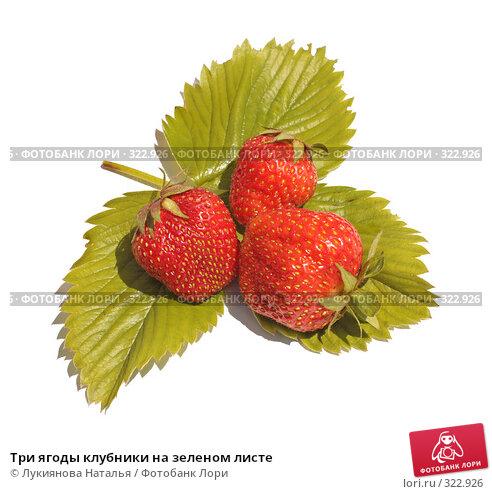 Купить «Три ягоды клубники на зеленом листе», фото № 322926, снято 10 июня 2008 г. (c) Лукиянова Наталья / Фотобанк Лори