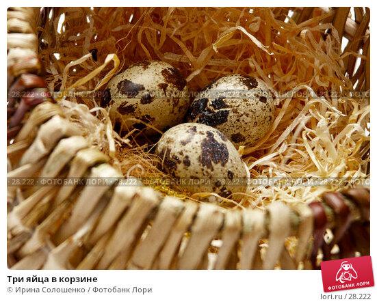 Три яйца в корзине, фото № 28222, снято 21 марта 2007 г. (c) Ирина Солошенко / Фотобанк Лори