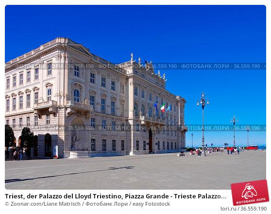 Triest, der Palazzo del Lloyd Triestino, Piazza Grande - Trieste Palazzo... Стоковое фото, фотограф Zoonar.com/Liane Matrisch / easy Fotostock / Фотобанк Лори