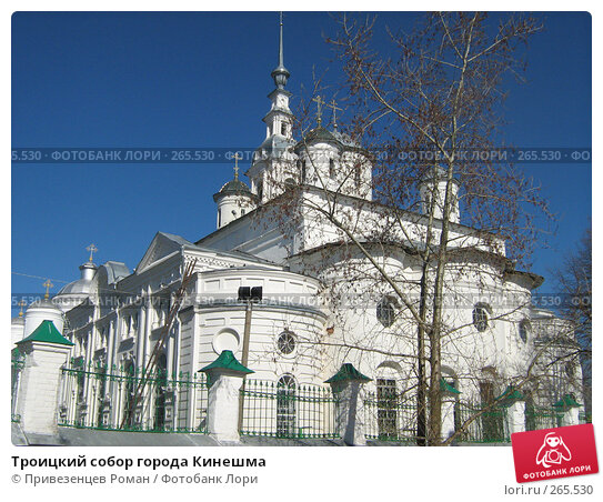 Троицкий собор города Кинешма, фото № 265530, снято 24 апреля 2008 г. (c) Привезенцев Роман / Фотобанк Лори