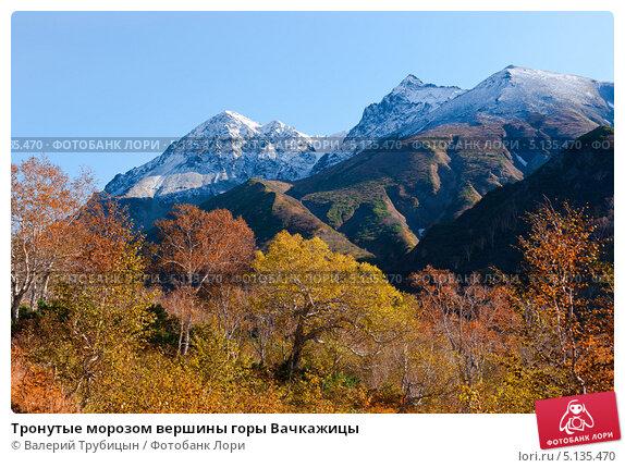 Купить «Тронутые морозом вершины горы Вачкажицы», фото № 5135470, снято 28 сентября 2013 г. (c) Валерий Трубицын / Фотобанк Лори