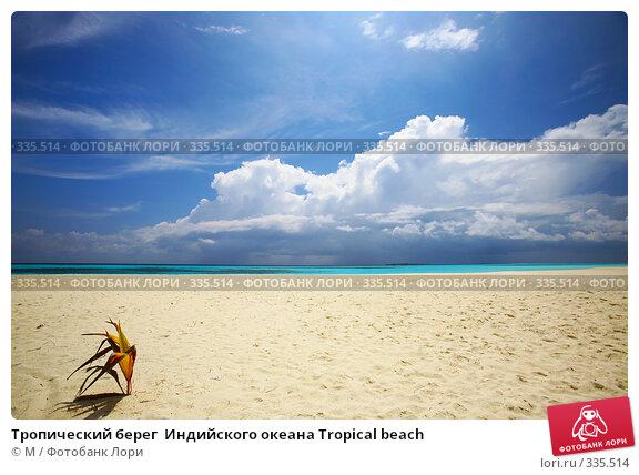 Тропический берег  Индийского океана Tropical beach, фото № 335514, снято 28 марта 2017 г. (c) Михаил / Фотобанк Лори