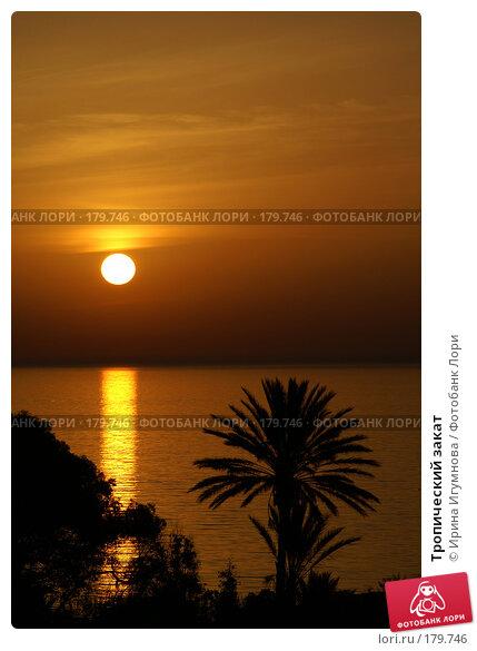 Тропический закат, фото № 179746, снято 18 июня 2006 г. (c) Ирина Игумнова / Фотобанк Лори