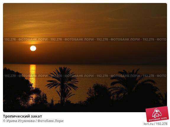 Тропический закат, фото № 192278, снято 18 июня 2006 г. (c) Ирина Игумнова / Фотобанк Лори