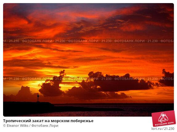Тропический закат на морском побережье, фото № 21230, снято 24 февраля 2007 г. (c) Eleanor Wilks / Фотобанк Лори