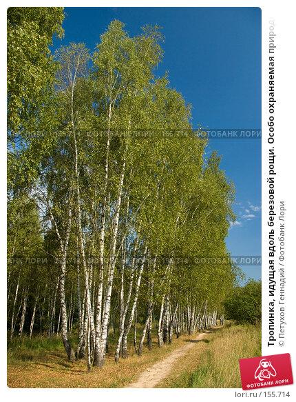 """Тропинка, идущая вдоль березовой рощи. Особо охраняемая природная территория """"Битцевский лес"""", фото № 155714, снято 4 сентября 2007 г. (c) Петухов Геннадий / Фотобанк Лори"""