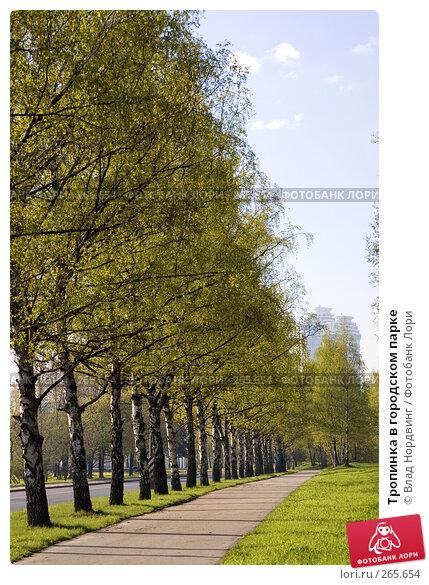 Тропинка в городском парке, фото № 265654, снято 27 апреля 2008 г. (c) Влад Нордвинг / Фотобанк Лори