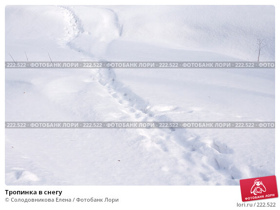 Тропинка в снегу, эксклюзивное фото № 222522, снято 24 февраля 2008 г. (c) Солодовникова Елена / Фотобанк Лори