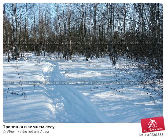 Купить «Тропинка в зимнем лесу», фото № 226538, снято 25 февраля 2007 г. (c) VPutnik / Фотобанк Лори