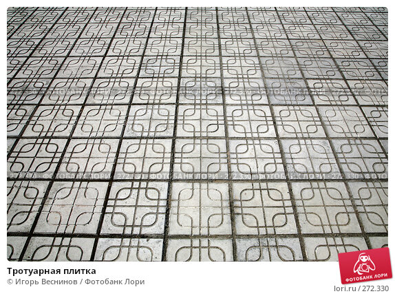 Тротуарная плитка, фото № 272330, снято 4 мая 2008 г. (c) Игорь Веснинов / Фотобанк Лори