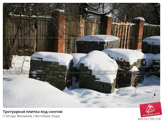 Тротуарная плитка под снегом, фото № 193114, снято 3 февраля 2008 г. (c) Игорь Веснинов / Фотобанк Лори