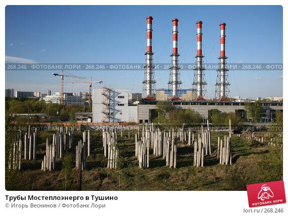 Купить «Трубы Мостеплоэнерго в Тушино», фото № 268246, снято 25 апреля 2008 г. (c) Игорь Веснинов / Фотобанк Лори