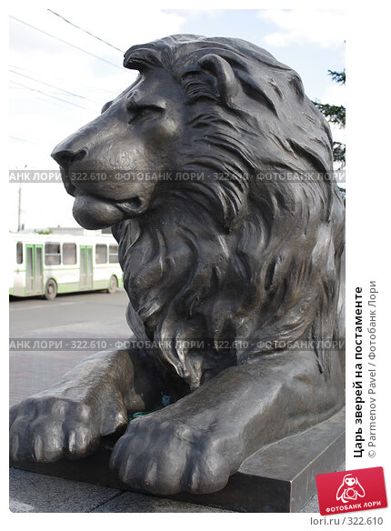 Царь зверей на постаменте, фото № 322610, снято 22 мая 2008 г. (c) Parmenov Pavel / Фотобанк Лори