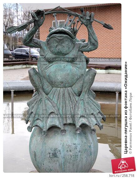Царевна-лягушка из фонтана «Ожидание», фото № 258718, снято 19 апреля 2008 г. (c) Parmenov Pavel / Фотобанк Лори