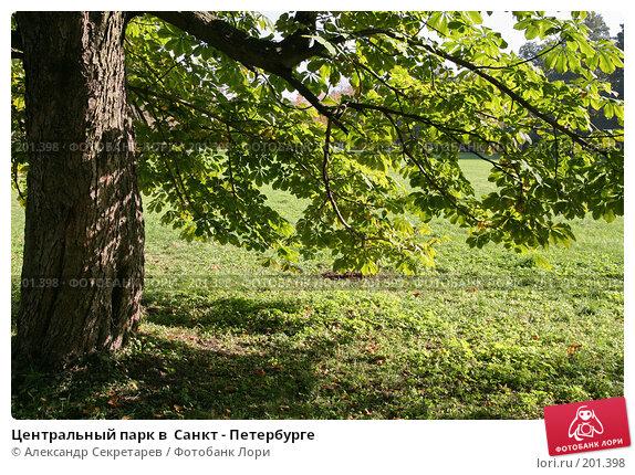 Центральный парк в  Санкт - Петербурге, фото № 201398, снято 30 сентября 2007 г. (c) Александр Секретарев / Фотобанк Лори