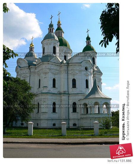 Купить «Церковь. Козелец.», фото № 131886, снято 21 ноября 2017 г. (c) Тютькало Игорь / Фотобанк Лори