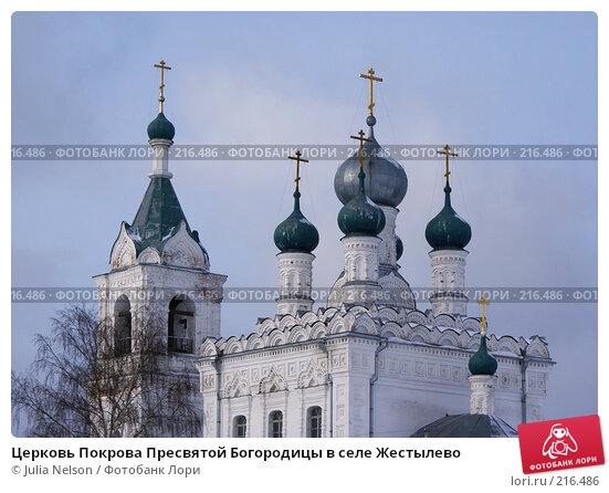 Церковь Покрова Пресвятой Богородицы в селе Жестылево, фото № 216486, снято 15 февраля 2008 г. (c) Julia Nelson / Фотобанк Лори