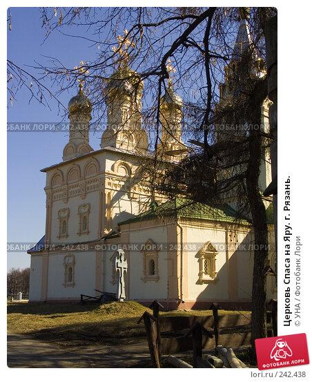 Церковь Спаса на Яру. г. Рязань., фото № 242438, снято 1 марта 2017 г. (c) УНА / Фотобанк Лори