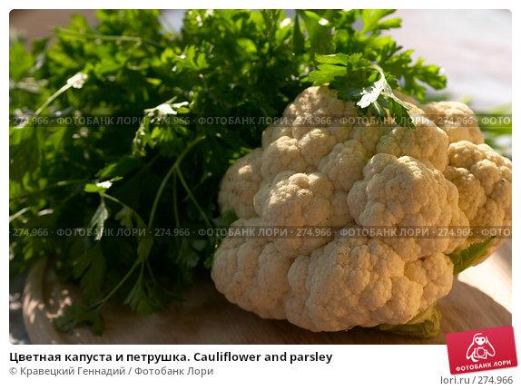 Цветная капуста и петрушка. Cauliflower and parsley, фото № 274966, снято 28 августа 2004 г. (c) Кравецкий Геннадий / Фотобанк Лори
