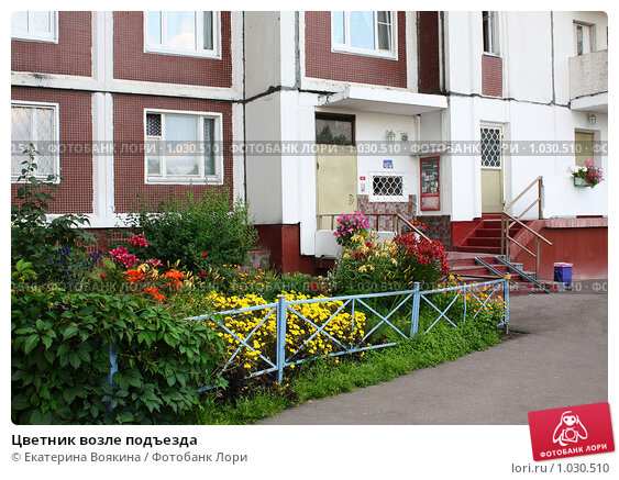 Купить «Цветник возле подъезда», фото № 1030510, снято 19 июля 2009 г. (c) Екатерина Воякина / Фотобанк Лори
