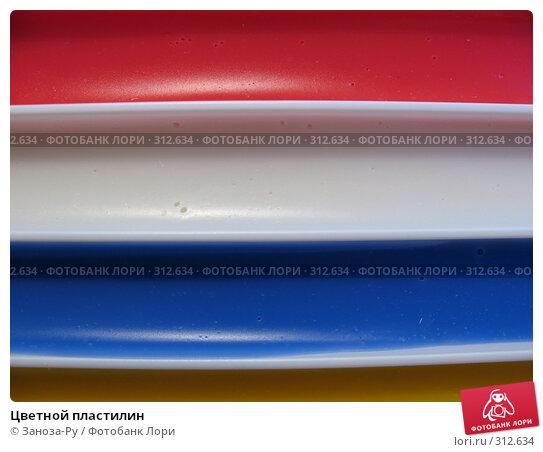 Цветной пластилин, фото № 312634, снято 3 июня 2008 г. (c) Заноза-Ру / Фотобанк Лори