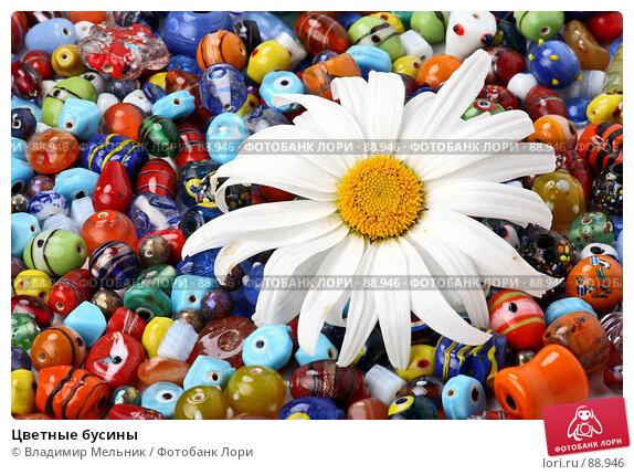 Купить «Цветные бусины», фото № 88946, снято 12 июля 2007 г. (c) Владимир Мельник / Фотобанк Лори