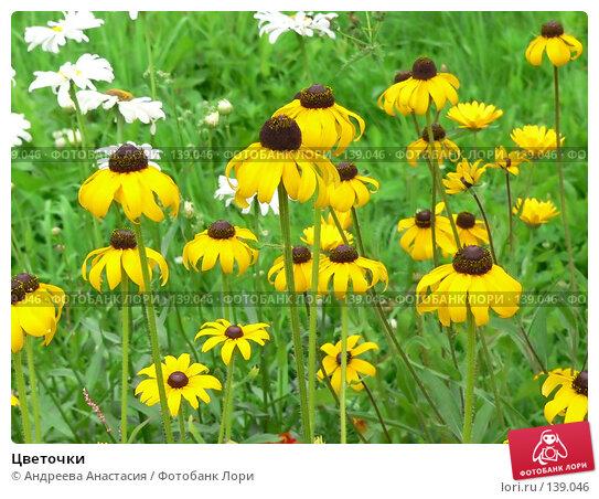 Цветочки, фото № 139046, снято 31 июля 2006 г. (c) Андреева Анастасия / Фотобанк Лори
