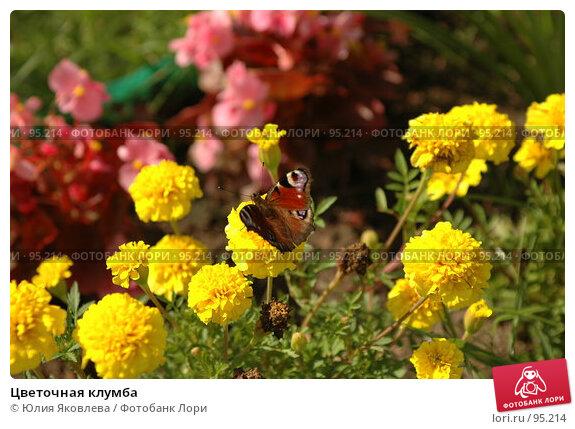 Цветочная клумба, фото № 95214, снято 24 августа 2006 г. (c) Юлия Яковлева / Фотобанк Лори