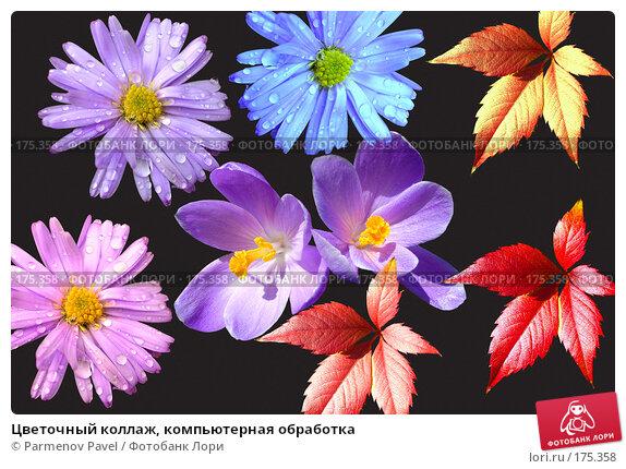 Купить «Цветочный коллаж, компьютерная обработка», фото № 175358, снято 11 января 2008 г. (c) Parmenov Pavel / Фотобанк Лори
