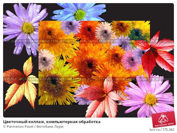Цветочный коллаж, компьютерная обработка, фото № 175362, снято 11 января 2008 г. (c) Parmenov Pavel / Фотобанк Лори
