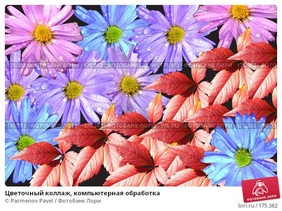 Купить «Цветочный коллаж, компьютерная обработка», фото № 175382, снято 11 января 2008 г. (c) Parmenov Pavel / Фотобанк Лори