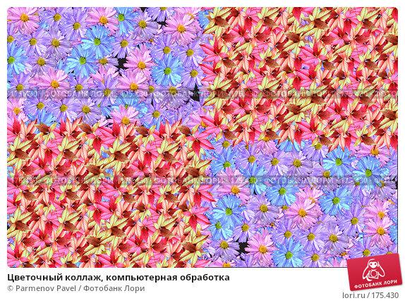 Цветочный коллаж, компьютерная обработка, фото № 175430, снято 11 января 2008 г. (c) Parmenov Pavel / Фотобанк Лори
