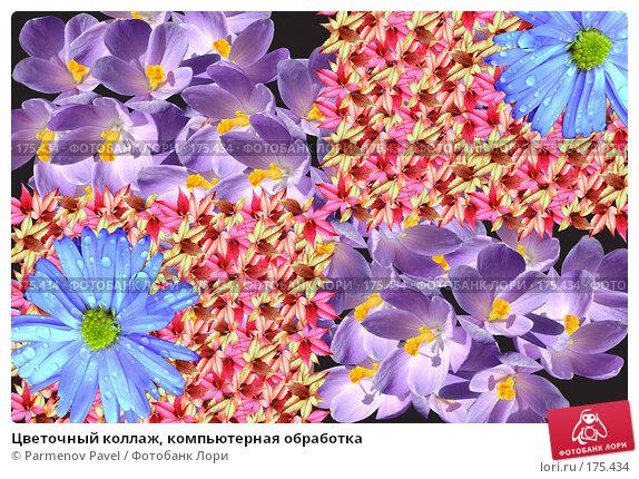 Цветочный коллаж, компьютерная обработка, фото № 175434, снято 11 января 2008 г. (c) Parmenov Pavel / Фотобанк Лори