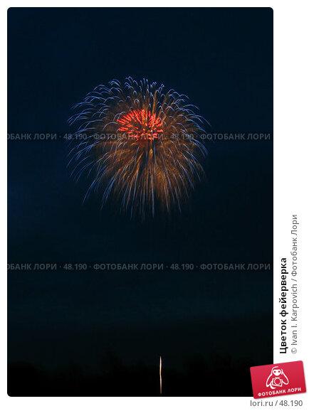 Цветок фейерверка, фото № 48190, снято 19 августа 2006 г. (c) Ivan I. Karpovich / Фотобанк Лори