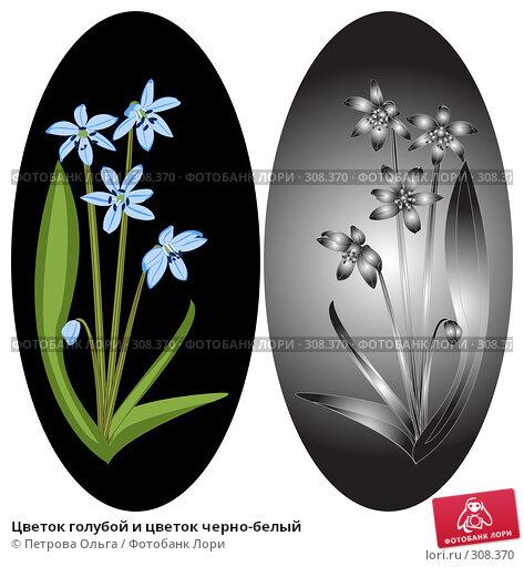 Цветок голубой и цветок черно-белый, иллюстрация № 308370 (c) Петрова Ольга / Фотобанк Лори