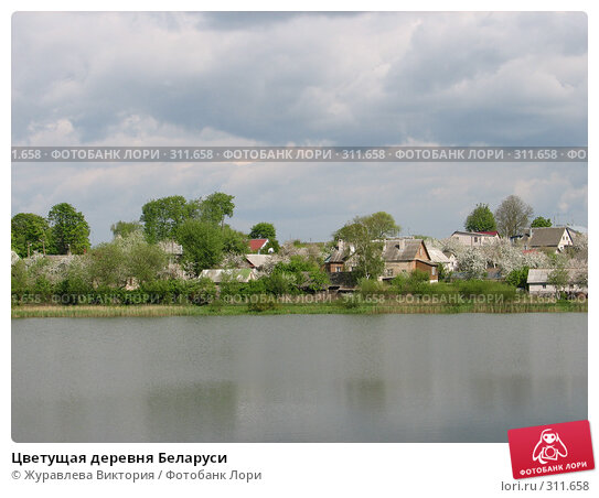Цветущая деревня Беларуси, фото № 311658, снято 21 ноября 2007 г. (c) Журавлева Виктория / Фотобанк Лори