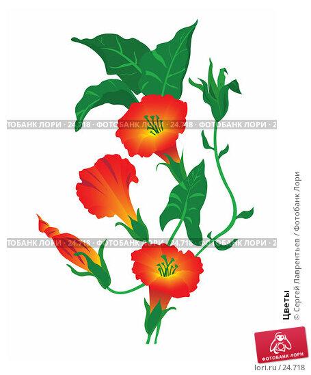 Цветы, иллюстрация № 24718 (c) Сергей Лаврентьев / Фотобанк Лори