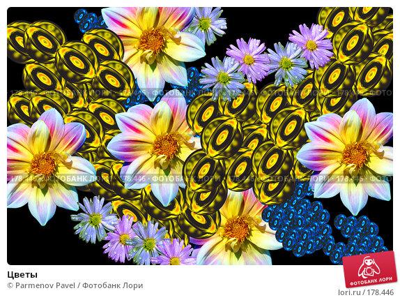 Цветы, фото № 178446, снято 21 декабря 2007 г. (c) Parmenov Pavel / Фотобанк Лори