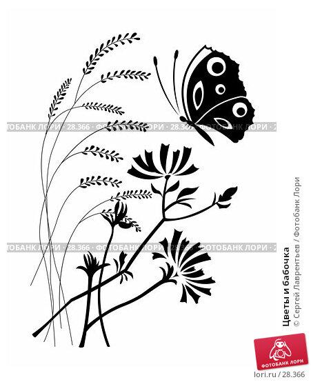 Цветы и бабочка, иллюстрация № 28366 (c) Сергей Лаврентьев / Фотобанк Лори