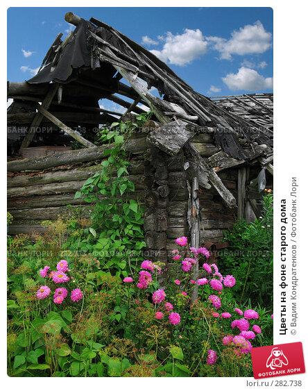 Купить «Цветы на фоне старого дома», фото № 282738, снято 23 апреля 2018 г. (c) Вадим Кондратенков / Фотобанк Лори