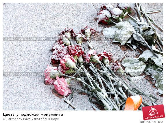 Цветы у подножия монумента, фото № 180634, снято 6 января 2008 г. (c) Parmenov Pavel / Фотобанк Лори