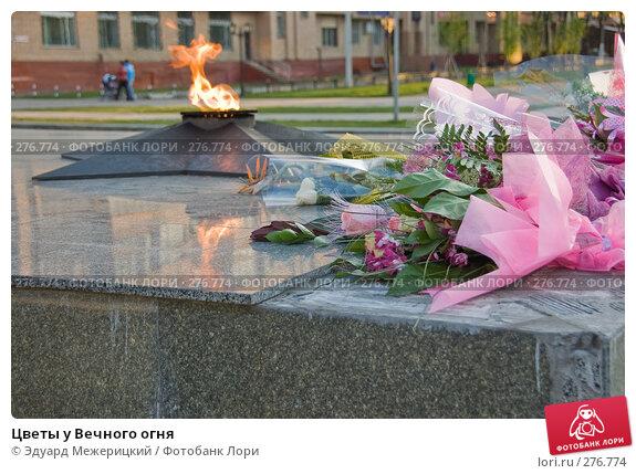 Купить «Цветы у Вечного огня», фото № 276774, снято 3 мая 2008 г. (c) Эдуард Межерицкий / Фотобанк Лори