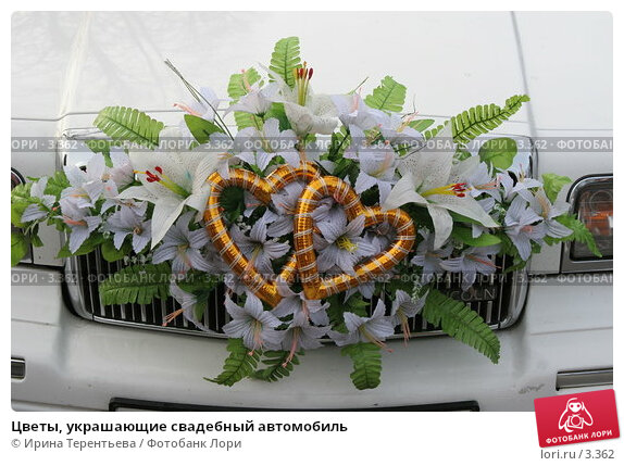 Цветы, украшающие свадебный автомобиль, фото № 3362, снято 19 ноября 2005 г. (c) Ирина Терентьева / Фотобанк Лори