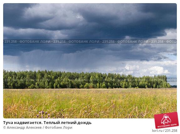 Туча надвигается. Теплый летний дождь, эксклюзивное фото № 231258, снято 19 июля 2006 г. (c) Александр Алексеев / Фотобанк Лори
