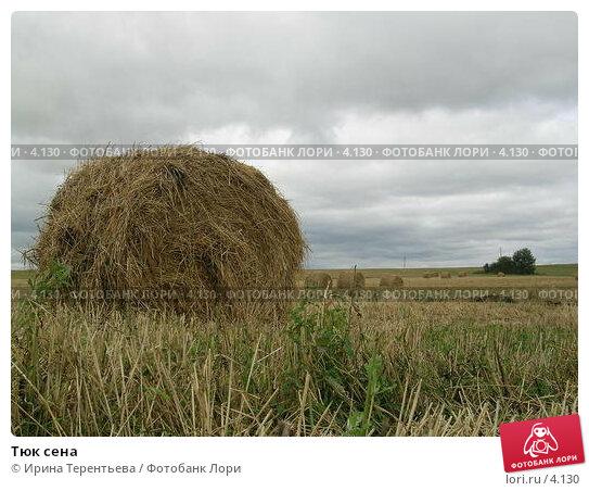 Купить «Тюк сена», эксклюзивное фото № 4130, снято 21 августа 2004 г. (c) Ирина Терентьева / Фотобанк Лори